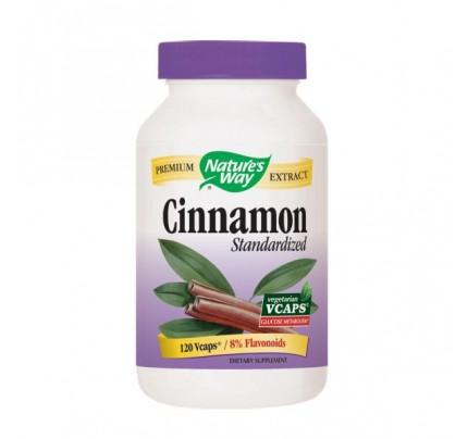 Cinnamon Standardized Extract 500mg 120 Vegetarian Capsules