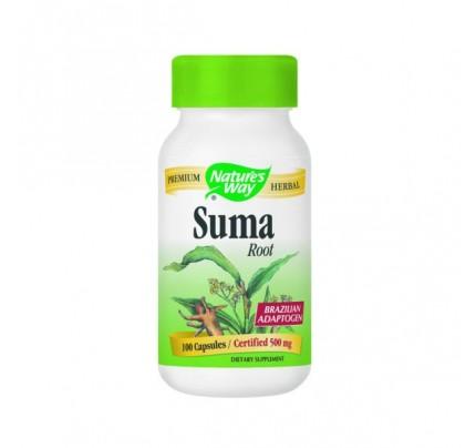 Suma Root Brazilian Ginseng 500mg 100 Capsules