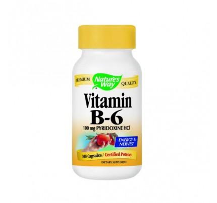 Vitamin B-6 100mg 100 Capsules