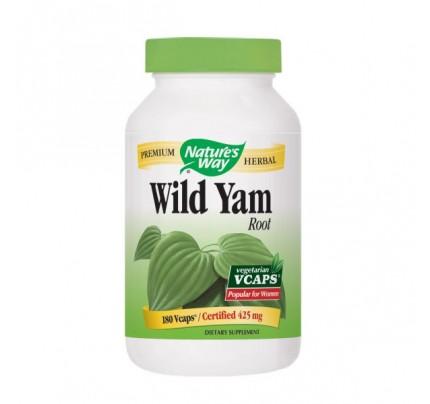 Wild Yam Root 425mg 180 Vegetarian Capsules