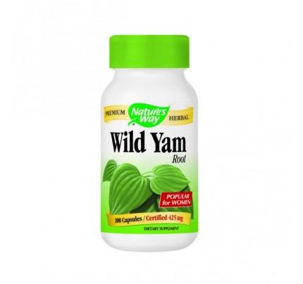 Wild Yam Root 425mg 100 Capsules