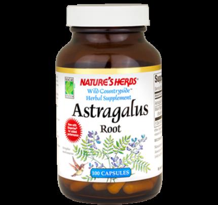 Astragalus Root 400mg 100 Capsules