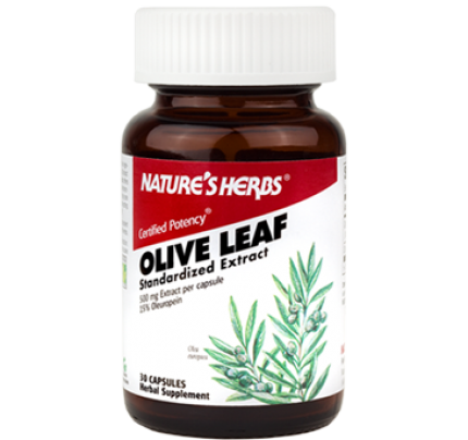 Olive Leaf 15% Standardized Extract 500 mg 30 Capsules