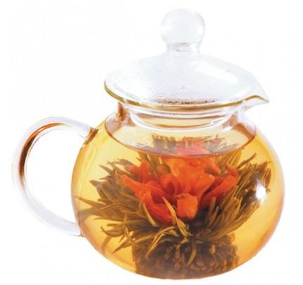 Glass Teapot-Teahouse