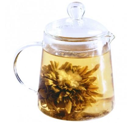 Glass Teapot-Urban