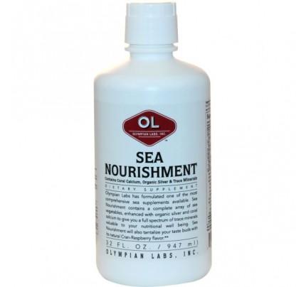 Sea Nourishment Liquid Vitamin Supplement 32 fl. oz.