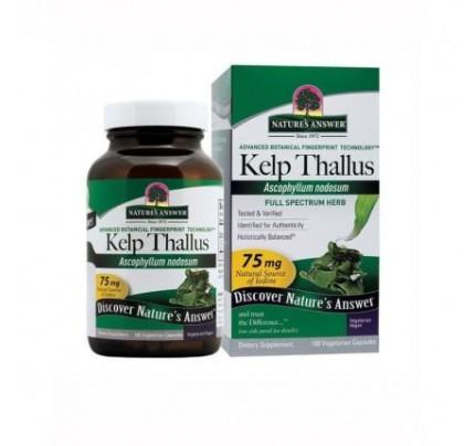 Kelp Thallus 100 Vegetarian Capsules