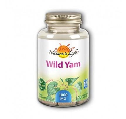 Wild Yam 1,000 mg 100 Capsules