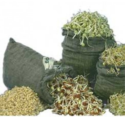 100% Natural Hemp Sprout Bags