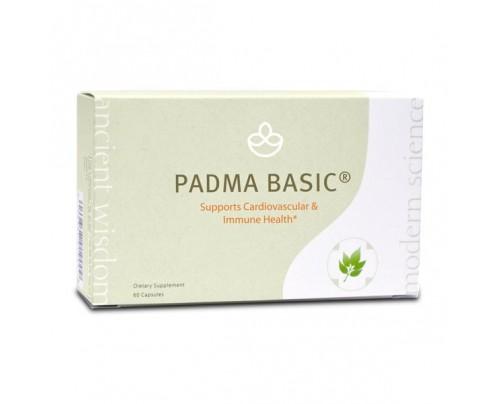EcoNugenics Padma Basic