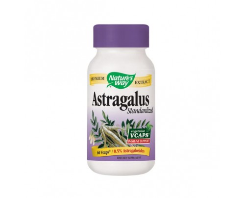 Nature's Way Astragalus Root 470mg 60 Vegetarian Capsules