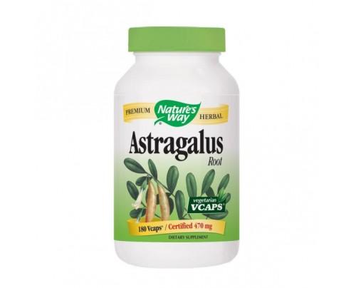Nature's Way Astralagus Root 470mg 180 Vegetarian Capsules