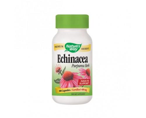 Nature's Way Echinacea Purpurea Herb Organic (stem, leaf, flower) 400mg 100 Capsules