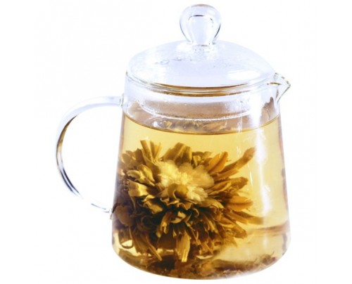Numi Organic Tea Glass Teapot-Urban