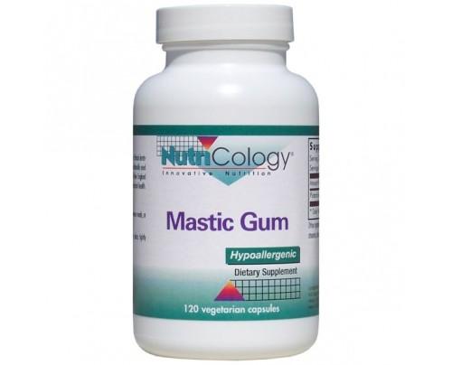 Nutricology Mastic Gum 120 Capsules