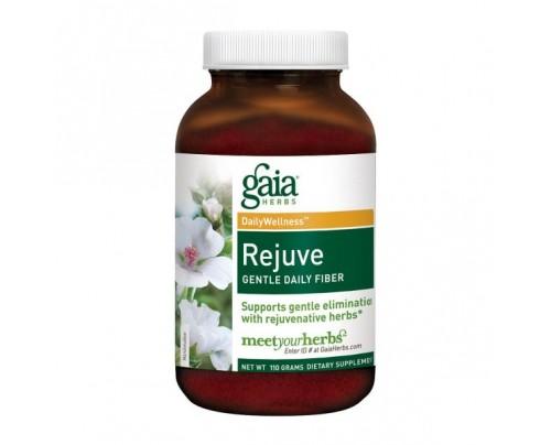 Gaia Herbs Rejuve Gentle Daily Fiber Powder