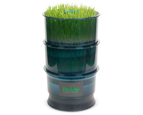 Tribest Freshlife Sprouter Wheatgrass Pad
