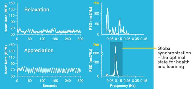 Global Synchronization Graph